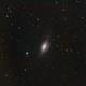 NGC3521,                                Markus A. R. Lang...