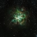 The Tarantula Nebula,                                Allan