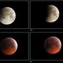 Lunar Eclipse 2019,                                Carsten Dosche