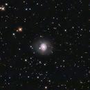 M77,                                crpainter