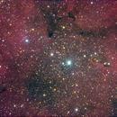 IC 1396 - Elephant's Trunk Nebula,                                Tullio Di Primio