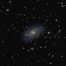 NGC2336,                                AstroGG