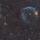 Sh2-308 Nebulosa cabeza de delfín (Dolphin head nebula),                                Alfredo Beltrán