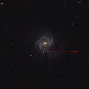 M61 Supernova SN2020jfo,                                Gregg