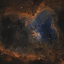 2018 - Autumn -IC1805- SHO,                                Axel