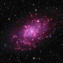 M33 in (mostly) narrowband,                                Rick Stevenson
