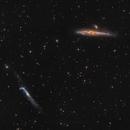 NGC4631(Whale) & NGC4656(Crowbar),                                Vladimir