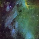 Pelican Nebula,                                Josh Balsam