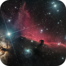 The Horsehead Nebula,                                Max Gillet