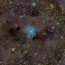 NGC 7023 - The Iris Nebula,                                Josh Woodward
