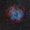 Rosette nebula reprocessed with Pixinsight. (Skywatcher 100ED Esprit),                                Kees Scherer