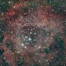 Rosette Nebula,                                Mike Bedingfield