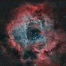 Rosette Nebula,                                Andreas Eleftheriou