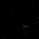 NGC 4559,                                Robert Johnson