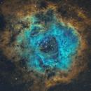 NGC 2237 Rosette nebula SHO,                                LAMAGAT Frederic