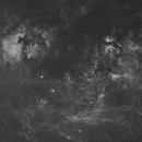 NGC7000 America & butterfly - wide field - 50 mm,                                Exalastro