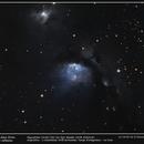 Messier 78 - La Nébuleuse diffuse la plus lumineuse du ciel ,                                grizli21