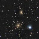 Coma Cluster,                                Mason Steidle