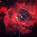 Rosette Nebula,                                Raffaele Lunari