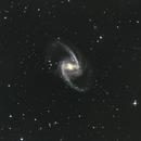 NGC1365 Great Barred Spiral Galaxy,                                Jan Scheers