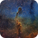 The Elephant's Trunk and IC1396,                                Richard Francis