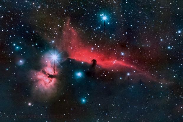 The Horsehead and Flame Nebula,                                Anurag Wasnik