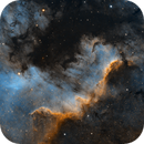 The Cygnus Wall revisited - NGC 7000,                                Bogdan Borz