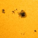 Sun 29.06.2021. Group of spots №2835,                                Sergei Sankov