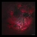 Elephant's Trunk Nebula IC1396 HaRGB Wide Field,                                Göran Nilsson