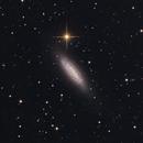 NGC 6503,                                Cedric Raguenaud