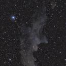 Witch Head Nebula IC2118,                                Alexander Voigt