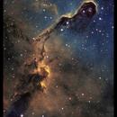 IC1396 The Elephant's Trunk,                                Tim Jardine