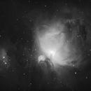 Orion Nebula,                                Robin Manford