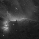 Horsehead in Hydrogen Alpha,                                rflinn68