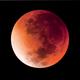 Time lapse of Supermoon lunar eclipse 2015,                                Olivier Ravayrol