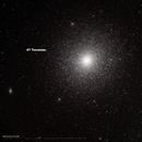 47 Tucanae (NGC104),                                Wenhan Guo (Danny)