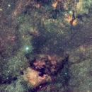 ngc7000(constellation du cygne),                                laup1234