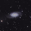 NGC 2903,                                Tim