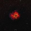 The Rosette Nebula,                                Cap10Pixel
