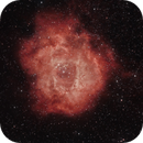 Rosette Nebula,                                Mike Brady