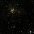 NGC2264,                                Stefano Zamblera
