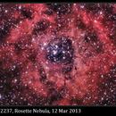 NGC 2237, Rosette Nebula, software field flatten, 12 Mar 2013,                                David Dearden