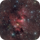 "Sh2-155 ""Cave"" Nebula,                                Dave & telescope"