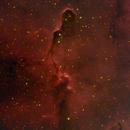 Elephant Trunk - Ha(lum)RGB,                                ksipp01