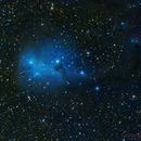 IC 447,                                Gary Opitz