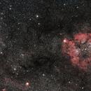IC 1396 wide field,                                Njål Brekke
