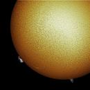 Sun with Sunspot AR 2770 and Prominences,                                RonAdams