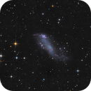 Coddington's Nebula - IC 2574,                                Thomas Richter