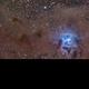 Iris Nebula (NGC 7023),                                Luca Marinelli