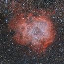Rosette Nebula (NGC2239),                                lindlmax